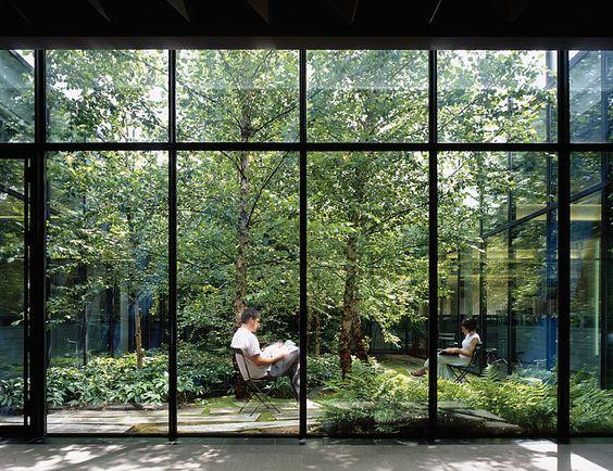 iluminación natural en el diseño interior
